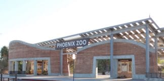 Experience The Phoenix Zoo with exclusive Drive-thru facility